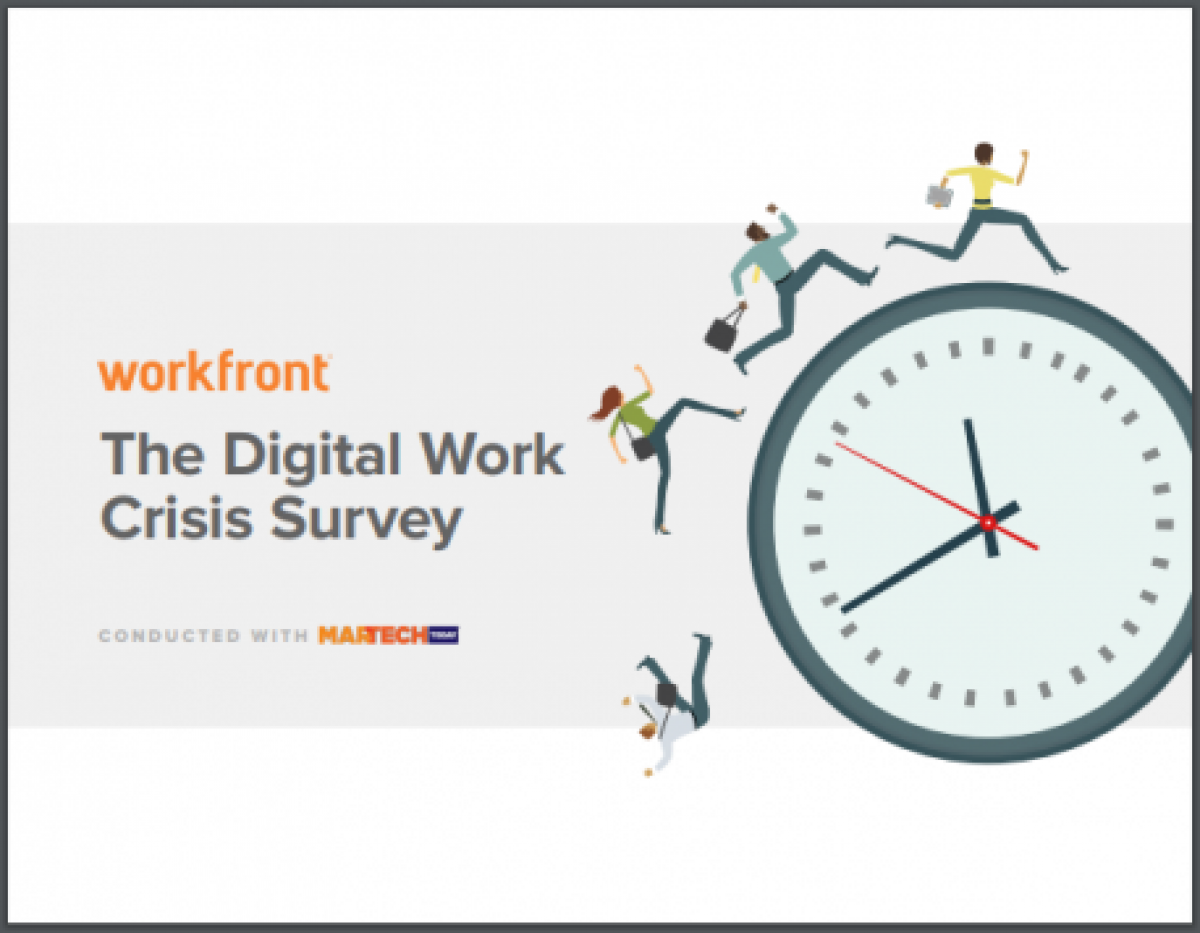 The Digital Work Crisis Survey