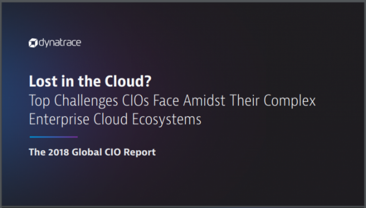 Lost in the Cloud? IT Complexity Report